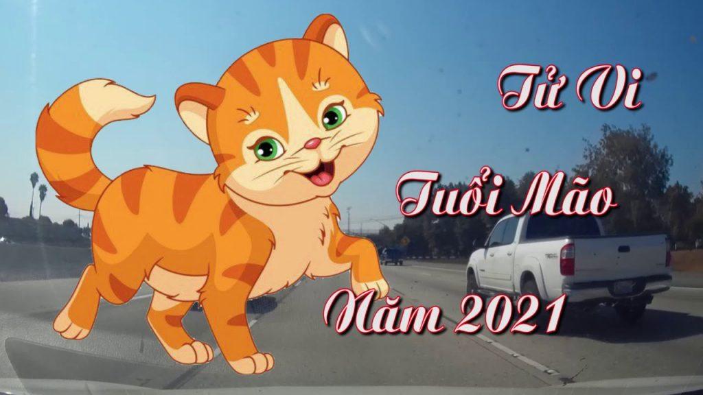 tử vi tuổi mão năm 2021